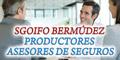Telefono Seguros Sgoifo – Bermudez – Productores – Asesores De Seguros