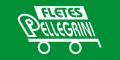 Telefono Transportes Pellegrini
